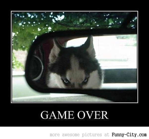 Game over [519]