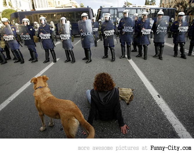 A Dog Protesting [ 13 photos ] [1758]