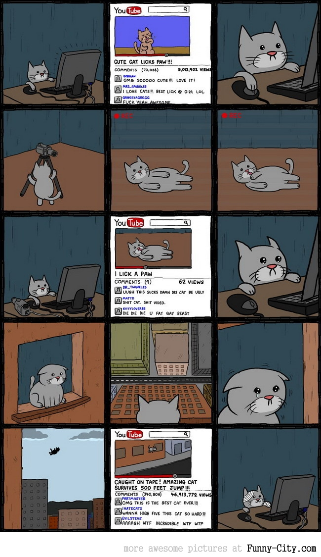 Youtube cat
