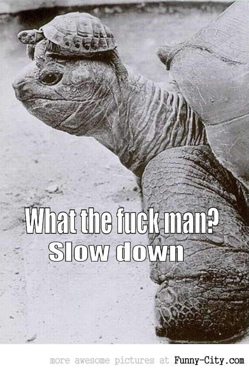 Slow down man... [2298]