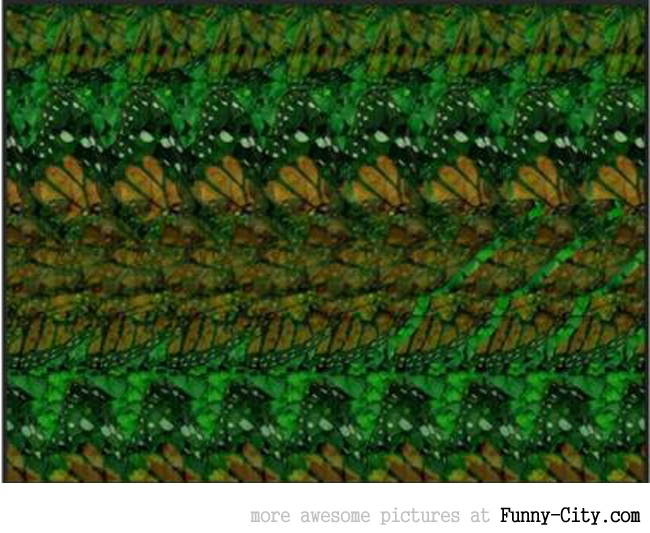 11 magic eye pictures [part 2] [2824]