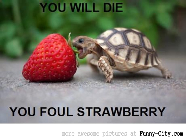 You will die!