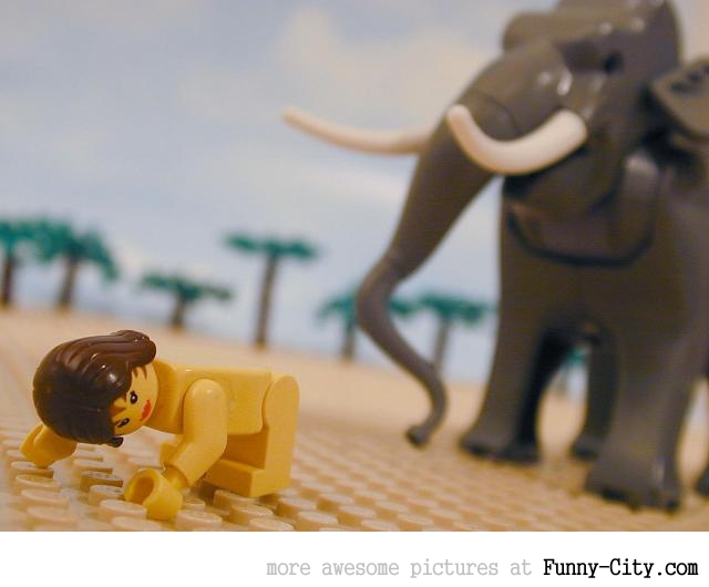 Laws from Leviticus in Lego. WTF... [20 photos] [5755]