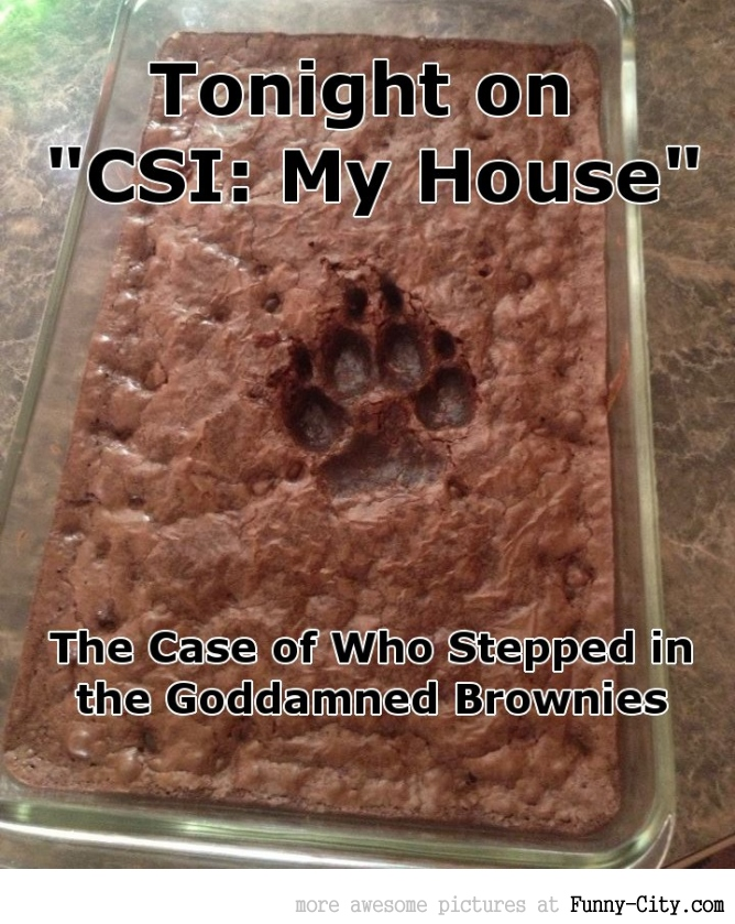 CSI: My House