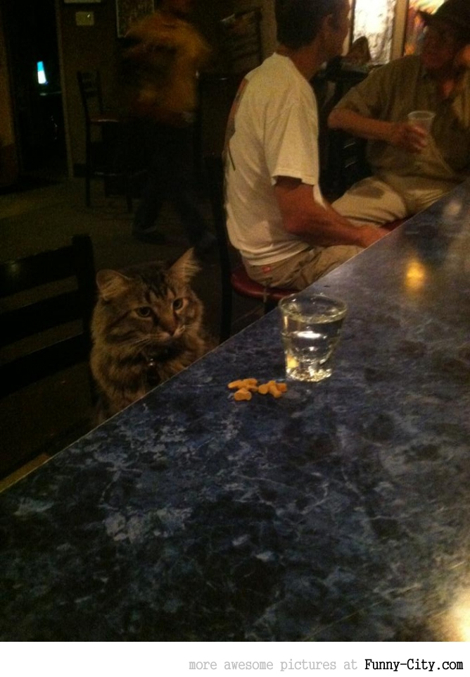 Just having a drink, and some peanuts