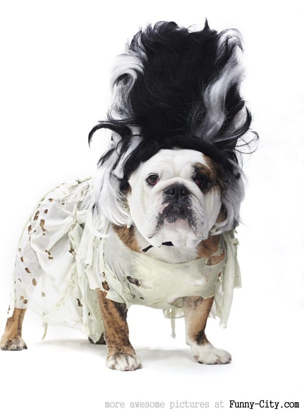 Yeah, I changed sides, I am Cruella now!