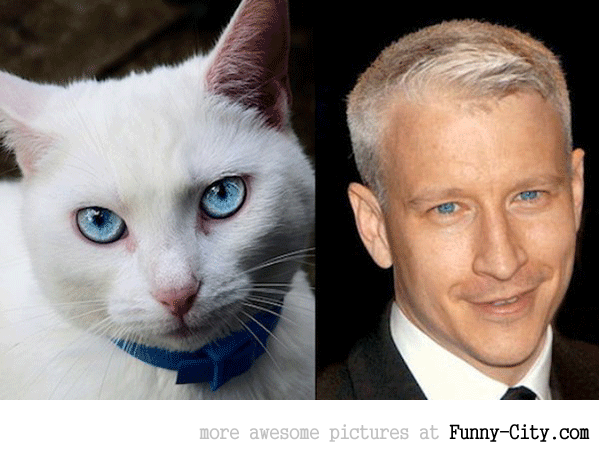 Celebrities and their animal Doppelganger (18 photos) [9265]