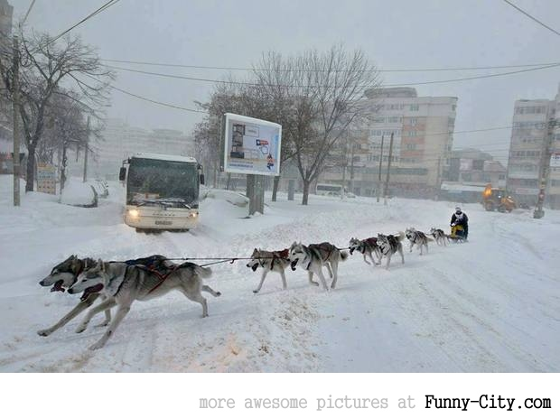 Meanwhile in Romania