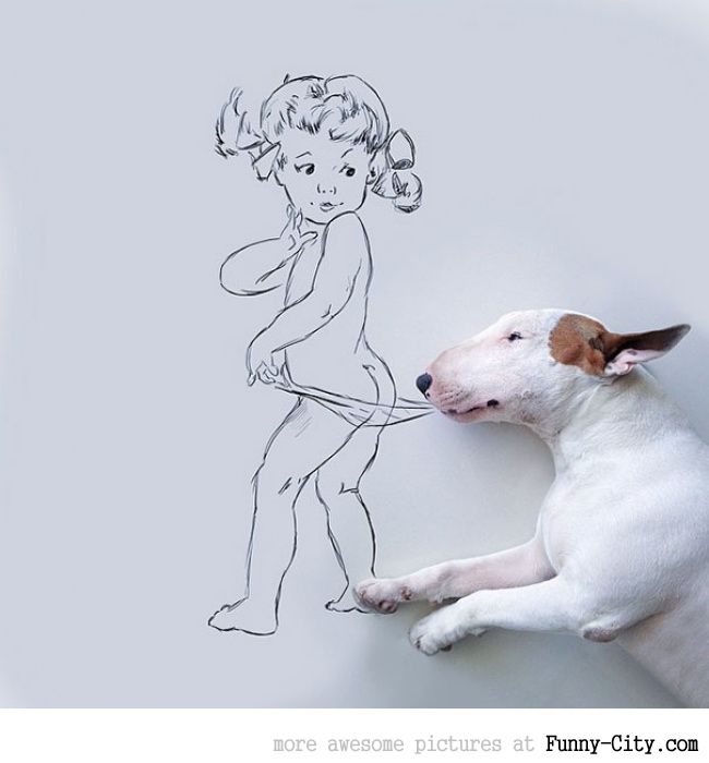 Illustration photography with this adorable bull terrier! (23 photos) [10422]