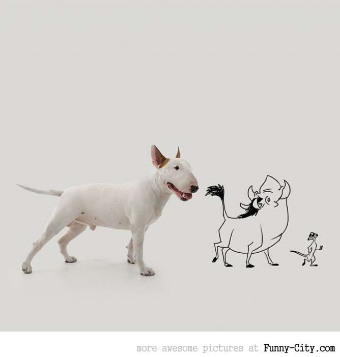 Illustration photography with this adorable bull terrier! (23 photos) [10435]