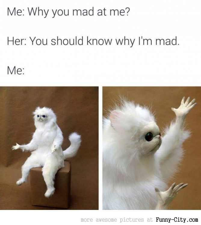 Why are you mad at me?