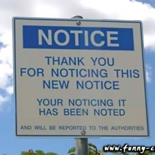 Thank you for noticing
