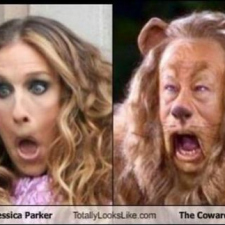 Sarah Jessica Parker is the Cowardly Lion
