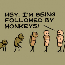 Followed by monkeys!