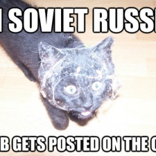 In Sovier Russia web is posted on cat