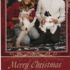 Best Christmas card they could do