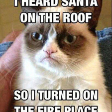 Heard Santa on the roof
